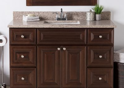"48"" Jasper vanity with Sienna Quartz top"